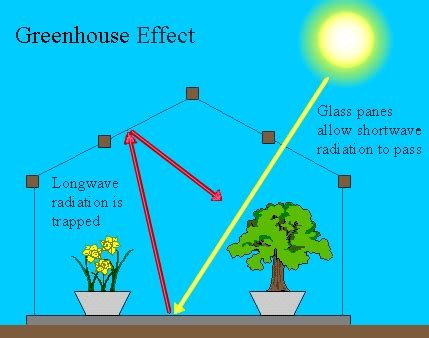 Global Warming Essay Sample - JetWriters